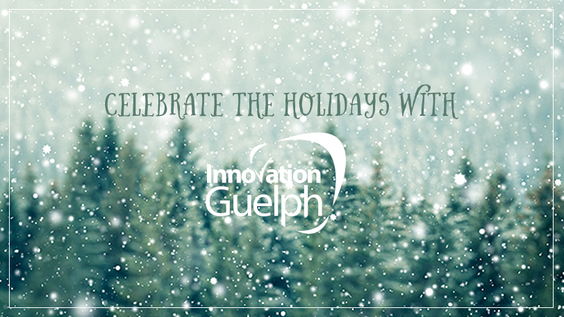 Innovation Guelph Holiday Party 2014