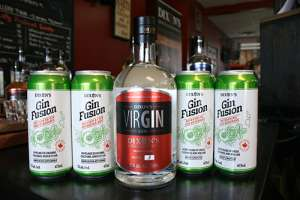 Image of Dixon's VIRgin and Gin Fusion
