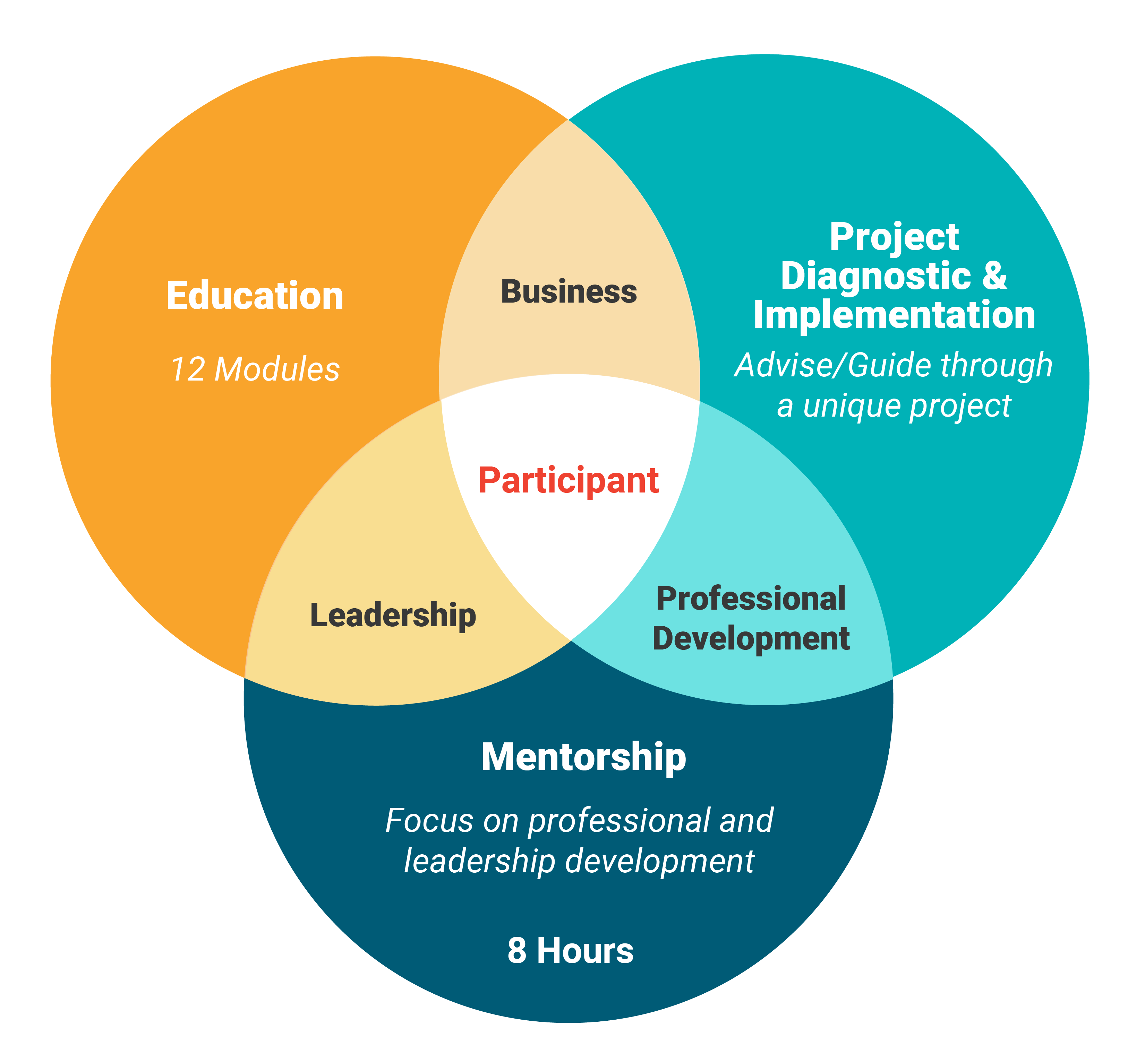 Core Components are: Education (12 modules), Project Diagnostic & Implementation (Adise/guide through unique project), Mentorship (Focus on non-technical skills to Focus on Professional and Leadership Development)