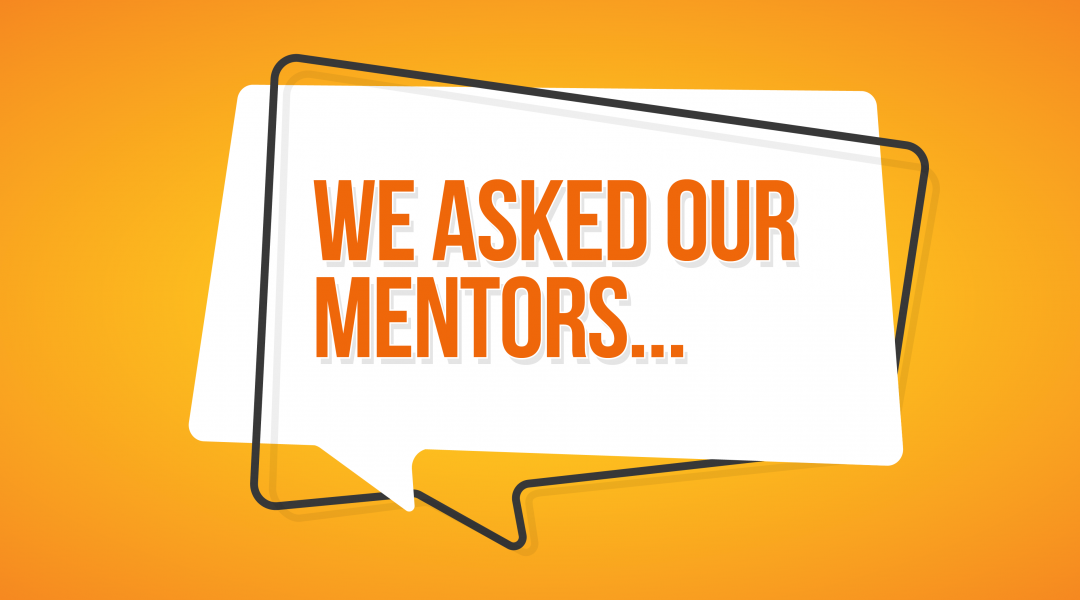 We Asked our Mentors: Whether Any of Our Clients are Specifically Targeting Niche Markets