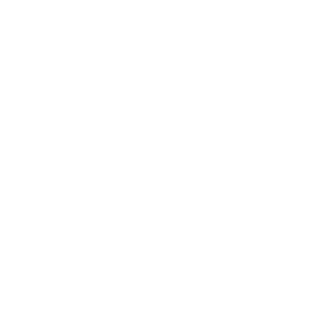 White IG 10 year logo